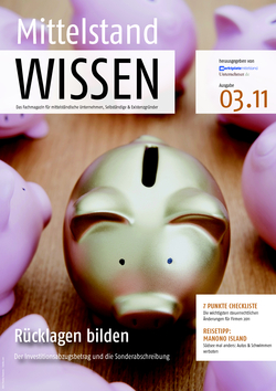 ePaper Cover - Steuern  2011