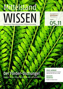 ePaper Cover - Förderungen KMU & Gründer 2011
