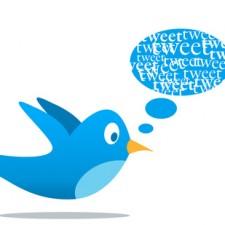 Tweet Vogel