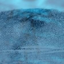 Das forensische Interview: Kriminalistische Gesprächskompetenz