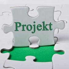Projekte zum Erfolg führen