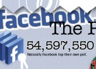 artikelbild facebook stats 2011