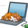 Schlafende Katze auf Laptop