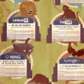 Artikelbild Social Media Zoo
