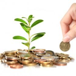 Crowdinvesting und Crowdfunding - eine kurze Erklärung