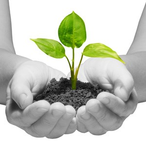 Startup: Geld oder Kunden? Darum sind Konsumenten genauso wichtig wie Kapital!