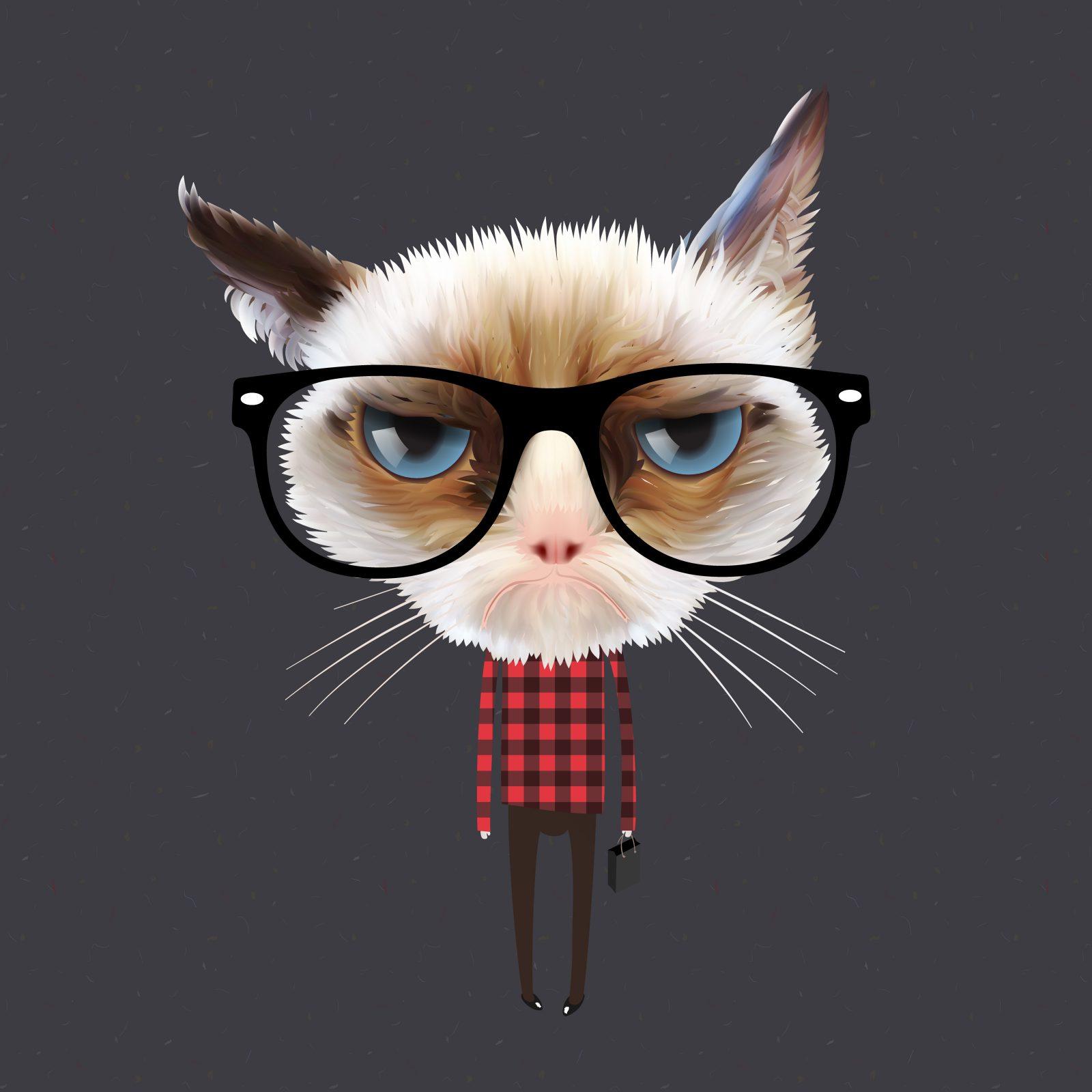 Cat Content ist nciht alles - Den eigenen Blog bekannt machen: 9 Tipps