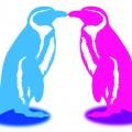 Google Penguin Update - Die richtige Strategie anwenden!
