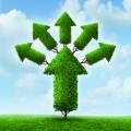 Optimierung & Steigerung der Conversion Rate: Die 7 C's