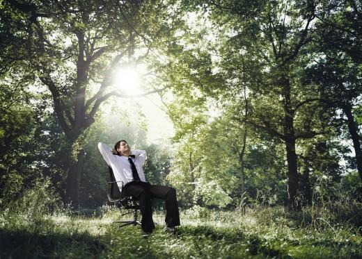 Die Natur: Lösungsfinder & Ort des Perspektivenwechsels