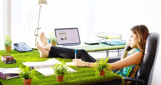 urban farming büro