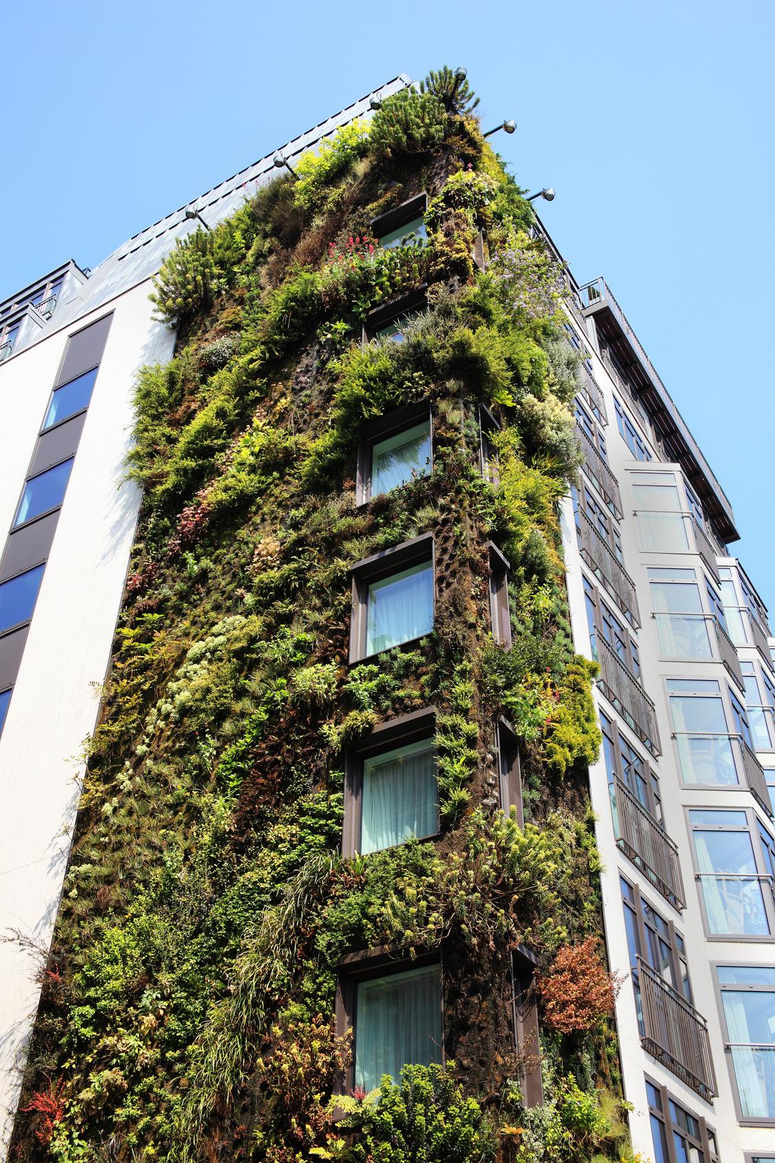 urban farming fassade begrünen