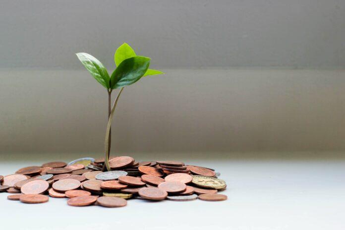 Gründung: Wann sollte mein Unternehmen profitabel sein?