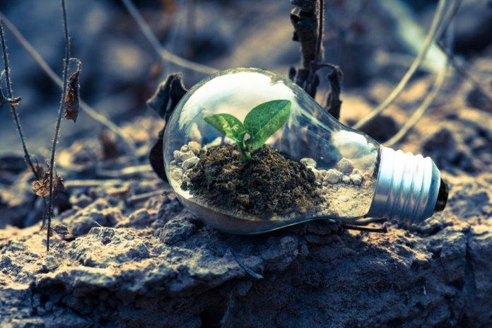Nachhaltig leben: 10 Tipps für deinen Alltag
