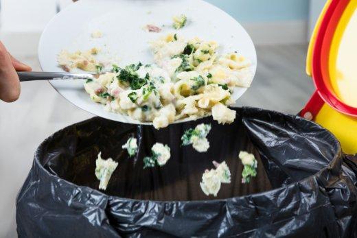 Nachhaltig leben: zu viel Essen landet im Müll