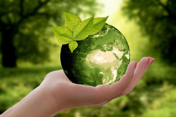Nachhaltig reisen: 4 Tipps für deinen grünen Urlaub