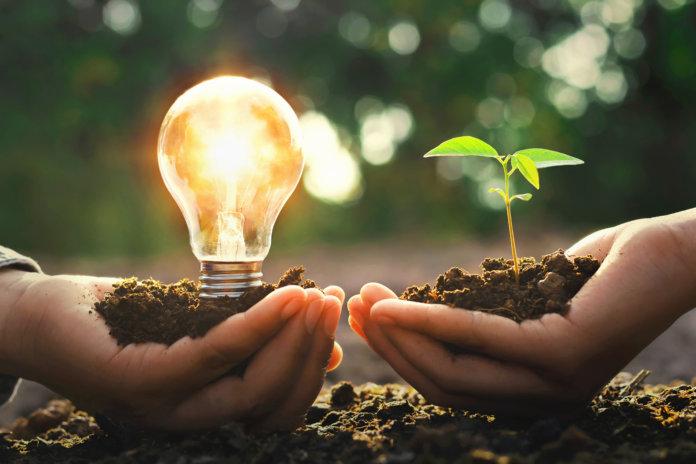 Nachhaltig und profitabel? 3 Denkanstöße für Unternehmen