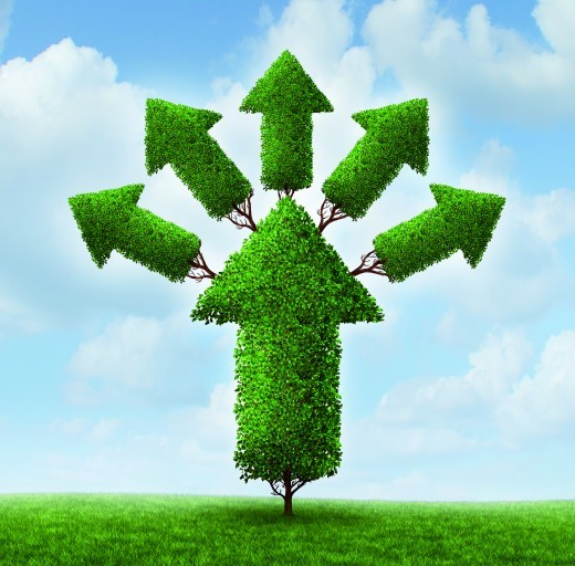Optimierung & Steigerung der Conversion Rate: 7 Schritte