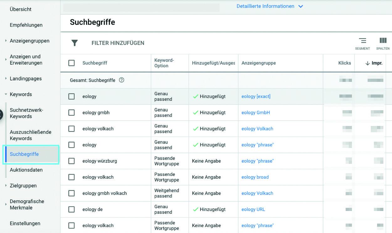 Abbildung 1: Suchbegriffe der Nutzer, zu denen die Anzeigen ausgespielt wurden