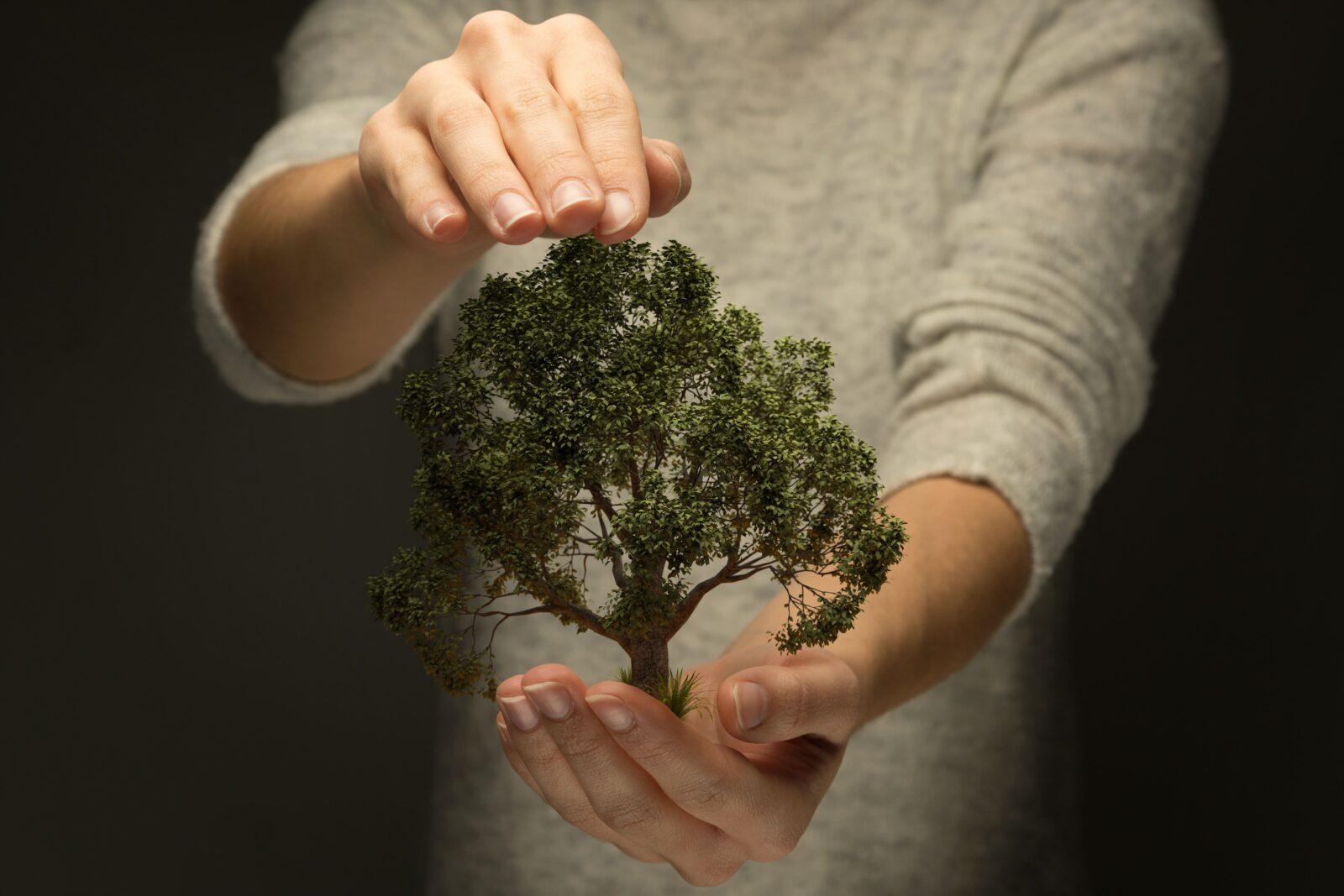 Umweltbewusst & erfolgreich: 3 Tipps für nachhaltige Produktentwicklung