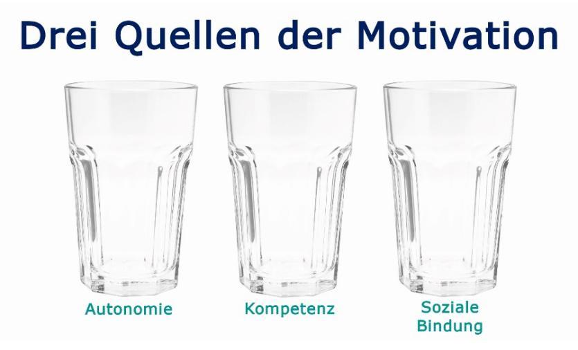 Grafik: Drei Quellen der Motivation