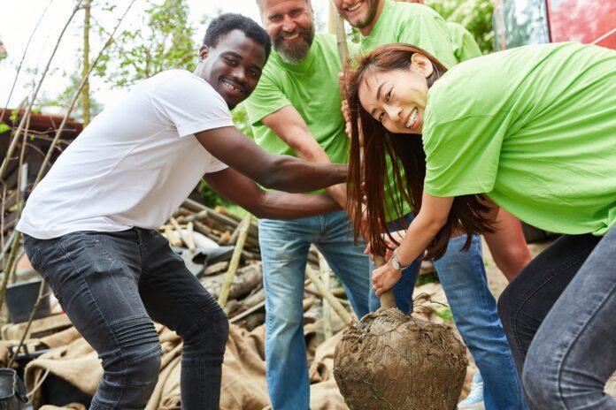 Innovatives CSR-Management: Deshalb lohnt es sich, CSR neu zu denken