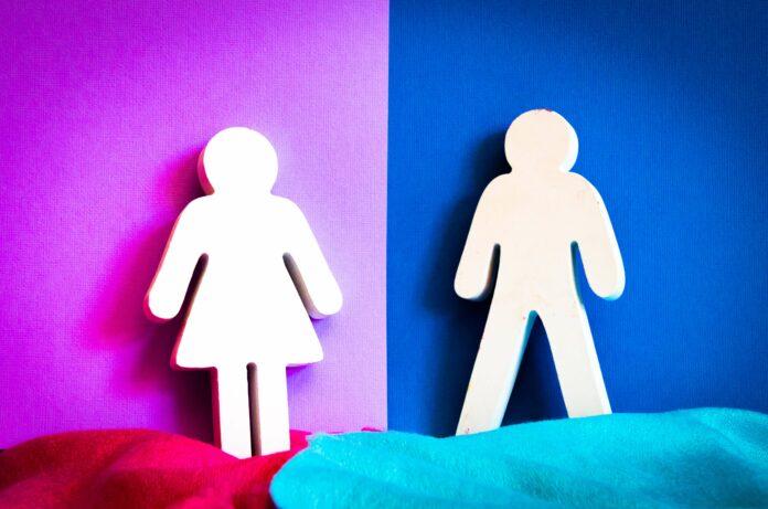 Gender Diversity: Deshalb führt es dein Unternehmen zum Erfolg