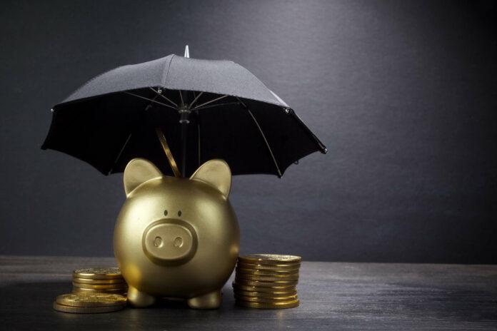 Vermögensschutz: So sichern Unternehmer ihr Geld vor dem Staat
