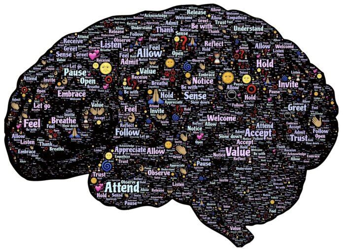 Startup-Mindset: Der erste Schritt zum erfolgreichen Unternehmer