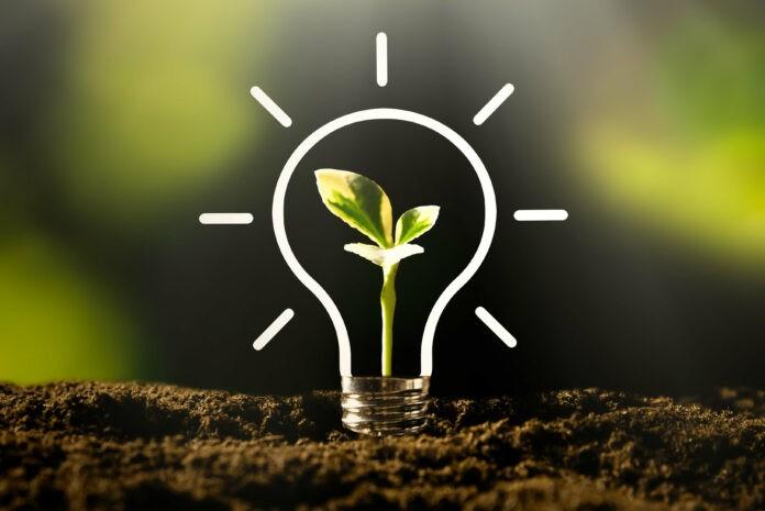 5 Tipps, wie Unternehmen in Nachhaltigkeit investieren können