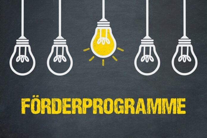 Gründer & Startups: So kannst du das passende Förderprogramm finden